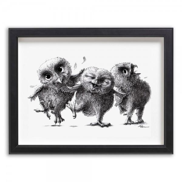 3 verrückte Eulen