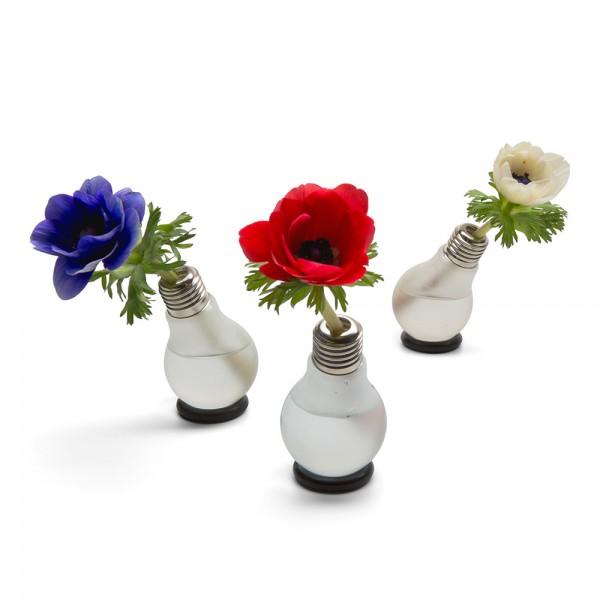 """Blühbirne - kleine Vase aus Glas im """"Glühbirne"""" Design als Deko"""